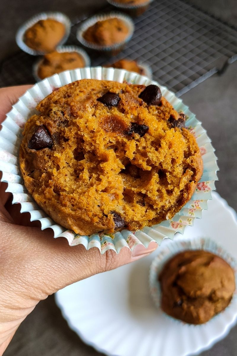 vegan chocolate pumpkin muffin held in a hand more muffins in the background
